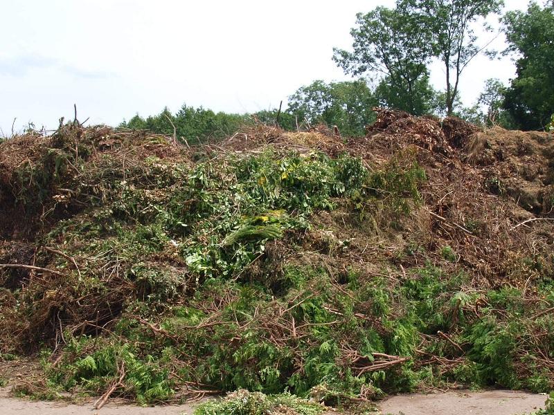 Grünschnitt / green waste - Input